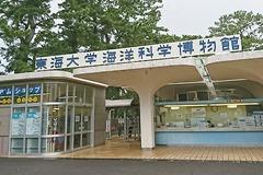 東海大学海洋科学博物館